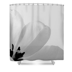 Shower Curtain featuring the photograph Idem by Julia Wilcox