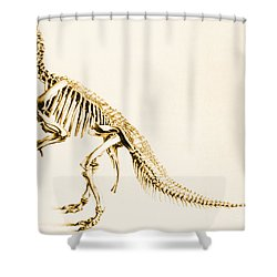 Iguanodon Mesozoic Dinosaur Shower Curtain by Science Source