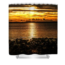 Illuminated Shower Curtain by Christopher Holmes