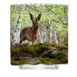 I'm All Ears Shower Curtain