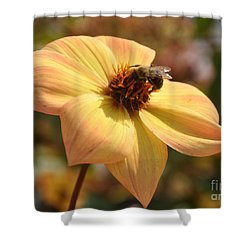Im Just So Busy   Winter Is Coming Soon  Shower Curtain by Elaine Manley