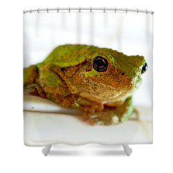Shower Curtain featuring the photograph Im Watching You by Peggy Franz