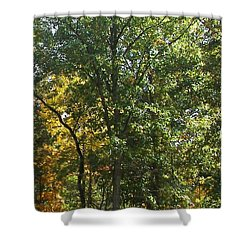 Shower Curtain featuring the photograph Image Of Fall by Pamela Hyde Wilson