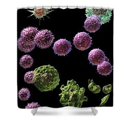Immune Response Cytotoxic 2 Shower Curtain