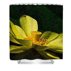 Shower Curtain featuring the photograph Impasto Lotus by Travis Burgess