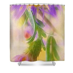 Impression Of Asters Shower Curtain by Judi Bagwell