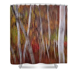 Abstract Impressions Vermont Birch Forest  Shower Curtain