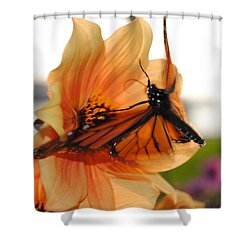 Shower Curtain featuring the photograph In Flight... by Michael Frank Jr