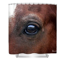 Shower Curtain featuring the photograph In His Sight by EricaMaxine  Price