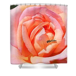 Shower Curtain featuring the photograph In Search Of Nectar by Fotosas Photography