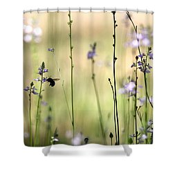 In The Field - Cards Shower Curtain by Travis Truelove