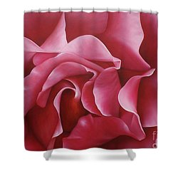 In The Heart Of A Rose Shower Curtain