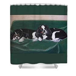 In The Lap Of Luxury Shower Curtain