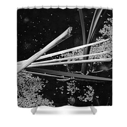 In The Pond Asian Influence Shower Curtain