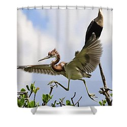 In The Rookery Shower Curtain by Patrick M Lynch