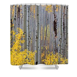 Shower Curtain featuring the photograph In The Thick Of Things by Jim Garrison