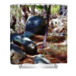 Incinerator Ridge Fractal Shower Curtain