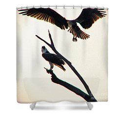 Incoming Shower Curtain by Beth Phifer