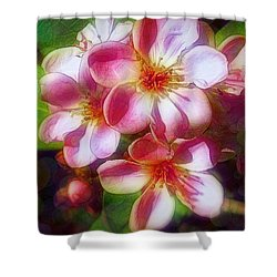 India Hawthorne Shower Curtain