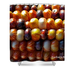 Shower Curtain featuring the photograph Indian Corn by Barbara McMahon
