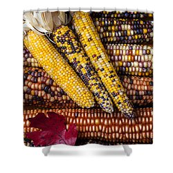 Indian Corn Shower Curtain by Garry Gay