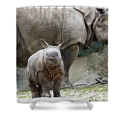Indian Rhinoceros Rhinoceros Unicornis Shower Curtain by Konrad Wothe