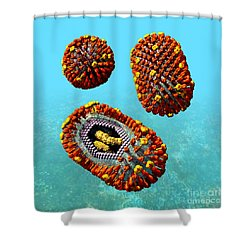 Influenza Virus Scene 1 Shower Curtain