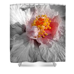 Inner Glow Shower Curtain by Renee Trenholm