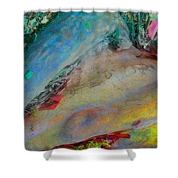 Shower Curtain featuring the digital art Inner Peace by Richard Laeton
