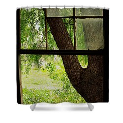 Shower Curtain featuring the photograph Inside Looking Out by Blair Stuart