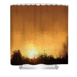 Insomnia 1 Shower Curtain by Terence Morrissey