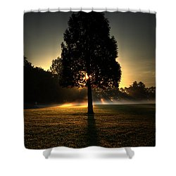Inspirational Tree Shower Curtain
