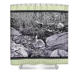 Intangible Bunny Shower Curtain by Susan Kinney