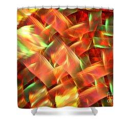 Interlocking Shower Curtain by Kim Sy Ok