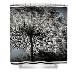 Intertwine Shower Curtain