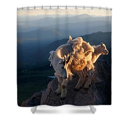 Two Faces West Shower Curtain