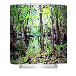 Into The Swamp Shower Curtain by Carol Groenen