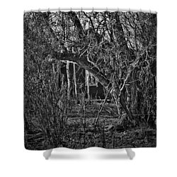 Into The Wilderness Shower Curtain by Jerry Cordeiro