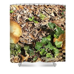 Invasive Shrooms Shower Curtain