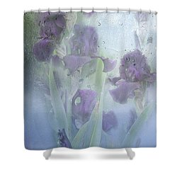 Iris In The Spring Rain Shower Curtain by Diane Schuster