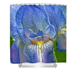 Shower Curtain featuring the photograph Iris by Larry Carr