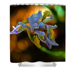 Shower Curtain featuring the photograph Iris by Tam Ryan