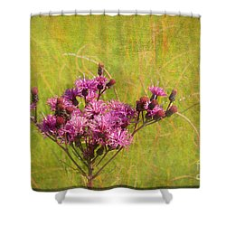 Ironweed In Autumn Shower Curtain by Judi Bagwell