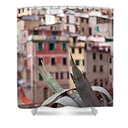 Italian Aloe Shower Curtain by Mike Reid