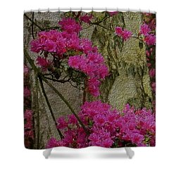 Shower Curtain featuring the photograph Japanese Painting by Manuela Constantin