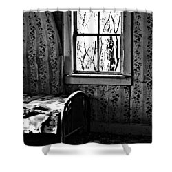Jennys Room Shower Curtain by The Artist Project