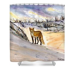 Shower Curtain featuring the painting Jersey Shore Fox by Clara Sue Beym