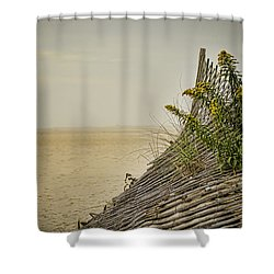 Jersey Shore Shower Curtain by Heather Applegate
