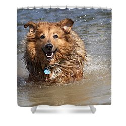 Shower Curtain featuring the photograph Jesse by Jeannette Hunt