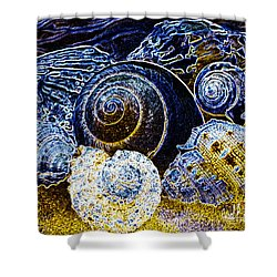 Abstract Seashell Art Shower Curtain